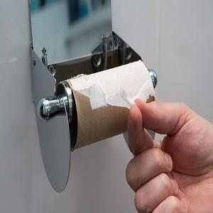 Order toilet paper online